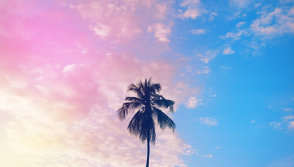 Dark silhouette of coconut palm trees against colorful sunset  sky on tropical island. Vacation and exotic travel concept background.