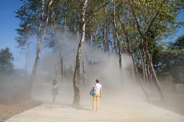 Une femme et une adolescente se rafraîchissent sous des brumisateurs installés dans des arbres