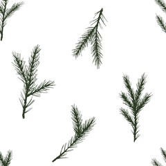 Vector Seamless christmas pattern with green spruce on white background