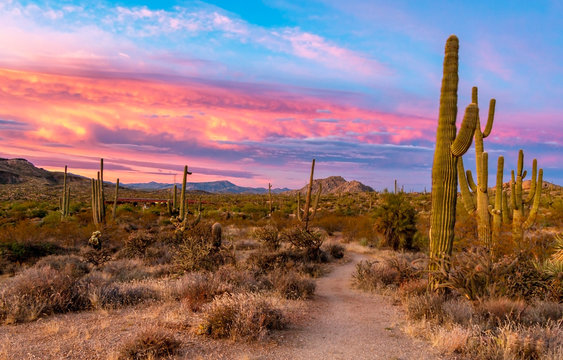Vibrant Sunset At Browns Ranch In Scottsdale AZ