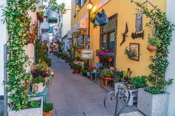 Colorful street Ischia, Italy