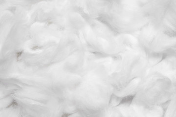 Cotton soft fiber texture background, white fluffy natural material