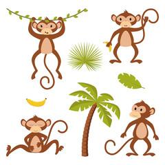 set of isolated monkey with plants