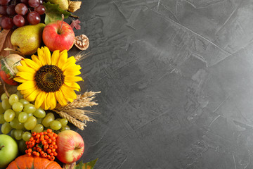 Autumn fruits and vegetables on grey background, flat lay with space for text. Happy Thanksgiving day