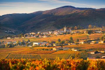 Fall colors and village of Quincié-en-Beaujolais, Beaujolais, France