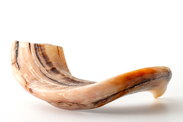 Happy Rosh Hashanah, judaism, traditional autumn holiday in jewish culture and judaic new year conceptual idea with ram horn or shofar isolated on white background with clipping path cutout
