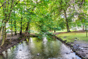 The river in the Park located just by famous cathedral in Gdansk, Oliwa, Poland