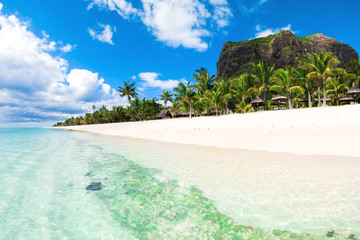 Foto auf Leinwand Insel Beautiful view of the resort on Mauritius. Transparent ocean, white sand, palms and sky