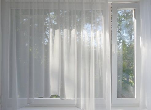 the garden in the window behind the transparent curtains