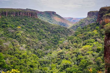 Panoramic view from top of cliffs in an opening valley in the late afternoon light, Chapada dos Guimarães, Mato Grosso, Brazil, South America