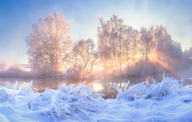 Foto auf Leinwand Himmelblau Winter nature landscape. Frosty trees on river side. Winter morning sunrise. Amazing plants covered by hoarfrost