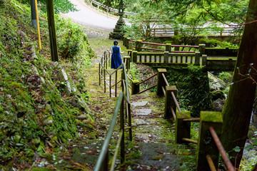 写真素材:仙龍寺、四国、愛媛県、風景、こけ、女性