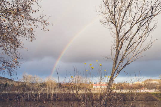 rainbow at winter above the river and trees