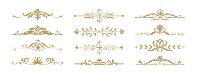 Fototapeta Floral ornamental divider. Vintage decorative elements for wedding invitation and greeting cards. Vector illustration design ornament jewelry dividers and borders for anniversary or celebration events obraz