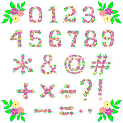 Set of arabic numbers and other signs of flowers and leaves on white. Illustration of floral decorative signs can be used for logo design, printed paper products, overlays, scrapbooking, paper crafts
