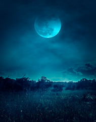 Wall Mural - Landscape of night sky with clouds.Beautiful bright full moon