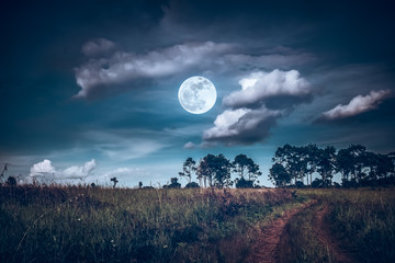 Wall Mural - Landscape of dark night sky with clouds. Beautiful bright full moon above wilderness area in forest.