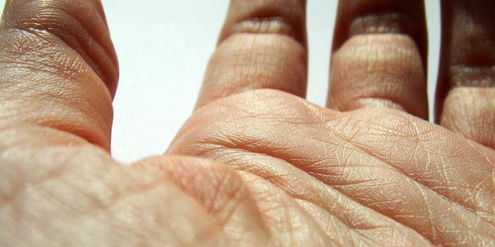 human skin. fingers. palm. macro. background