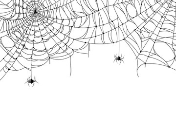 Cobweb background. Scary spider web with spooky spider, creepy arthropod halloween decor, net texture tattoo design vector template Fotoväggar