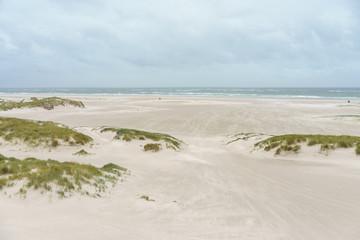 Wall Mural - Dünen an der Nordsee
