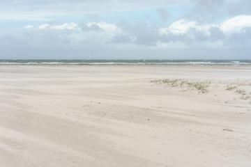 Fototapete - Dünen an der Nordsee