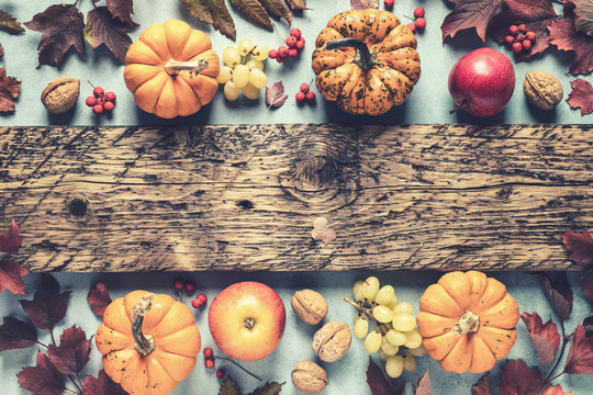 autumn background of fall leaves and pumpkins and variety harvest fruits and blank space for a text, may used for thanksgiving or halloween or another autumn holidays