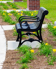 Park Bench with Day Lilies