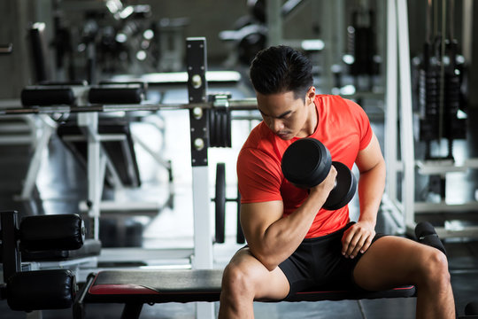 dumbbell exercise in fitness gym