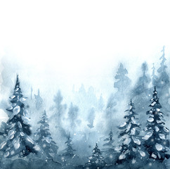 Winter spruce forest.