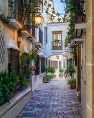 In de dag Mediterraans Europa A picturesque and narrow street in Marbella old town, province of Malaga, Andalusia, Spain.