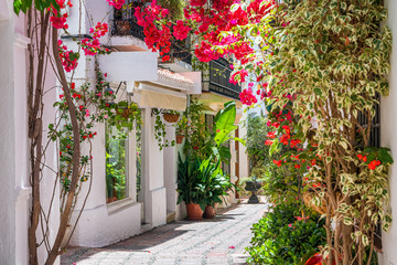 A picturesque and narrow street in Marbella old town, province of Malaga, Andalusia, Spain.