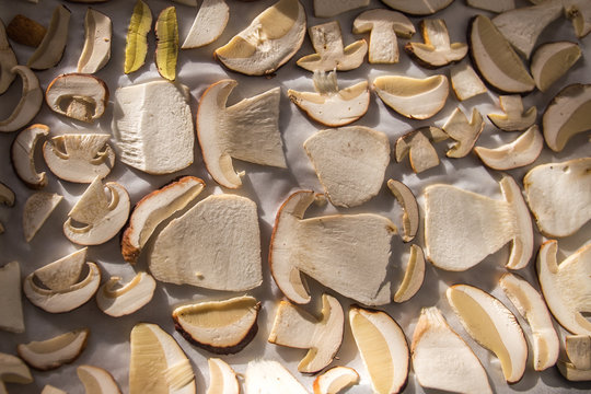 Drying mushrooms on white background, sliced mushrooms