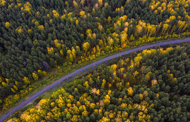 Aerial view from drone of railway in the autumn afternoon among trees. Natural colorful background.