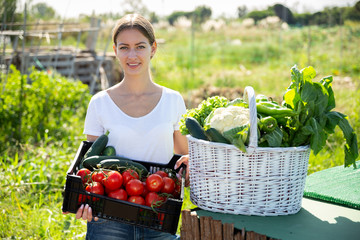 Fototapete - Portrait of young woman gardener with harvest of vegetables