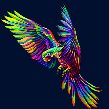 Portrait of a macaw parrot in flight. Abstract, multi-colored image on a dark blue background.