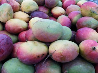 Mango for sale at the supermarket