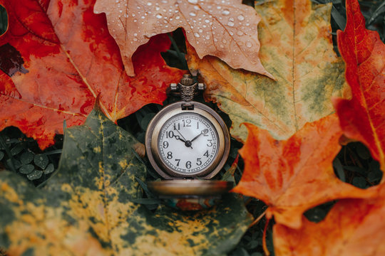 Retro vintage antique pocket watch clock lying on ground in autumn fall red yellow orange maple leaves. Concept of past or future time.