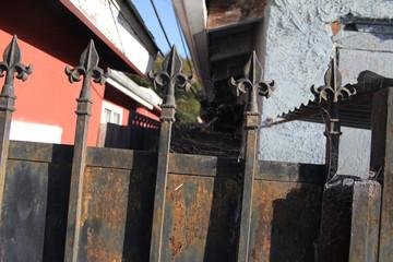 old ornate rusty gate fleur de lis sharp points rustic