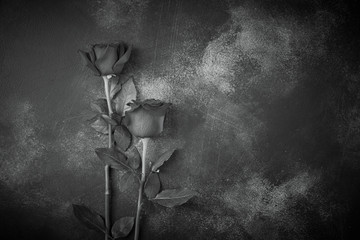 Roses lie on a textured background. Space for your text. Black and white image.