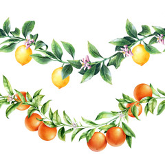 Orange and lemon tree branches borders. Isolated garland with citrus fruit. Package design.