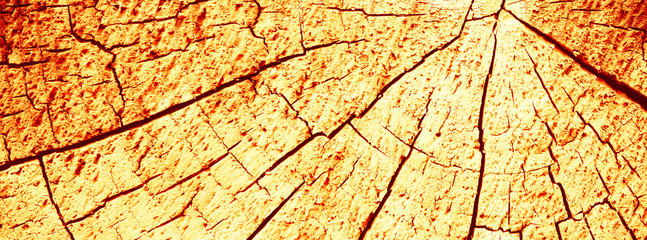 Fototapete - Abstract texture with cracks. Old uneven surface.
