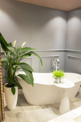Salle de bain style rétro hôtel particulier parisien type Haussmanien avec une baignoire sabot une belle plante verte un guéridon blanc et des murs gris anthracite