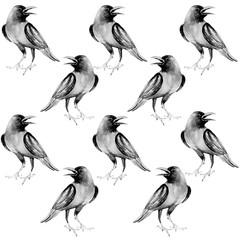 Black, crow, bird, water color, art