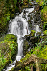 Waterfall near Burrator Reservoir, Plymouth, Dartmoor, Devon.