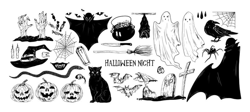 Monochrome Halloween set of various holiday elements and scary characters. Hand drawn vector illustrations of raven, hat, cat, jack o'lantern, vampire, ghosts, bats, spider, snake, graves, coffin.