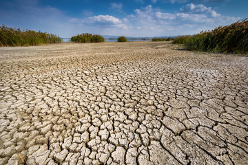 Dry lake bed with natural texture of cracked clay in perspective floor