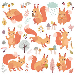 Wall Mural - Squirrel set hand drawn style. Cute Woodland characters playing, sleeping, relaxing and having fun.