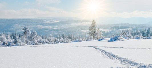 Photo sur Plexiglas Campagne Stunning panorama of snowy landscape in winter in Black Forest - winter wonderland