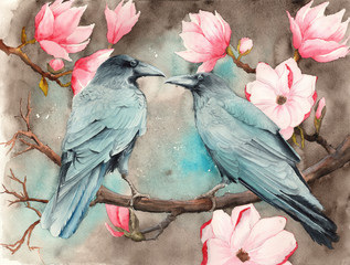 Watercolor picture of two ravens on the magnolia branches with bright pink flowers