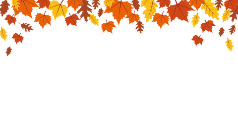 autumn orange and yellow falling leaves on white background vector illustration EPS10